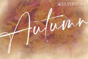 Silverhorn Jewelers Fall Lookbook 2021